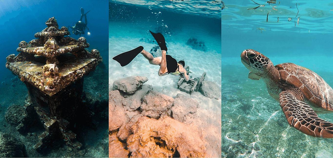 新手潛水該如何選擇?探索海底世界2種常見潛水方式一次搞懂