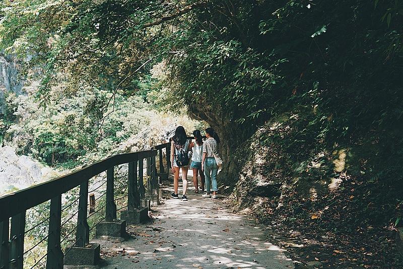 走進絕美原始山林!走進花蓮砂卡礑步道吸收芬多精!