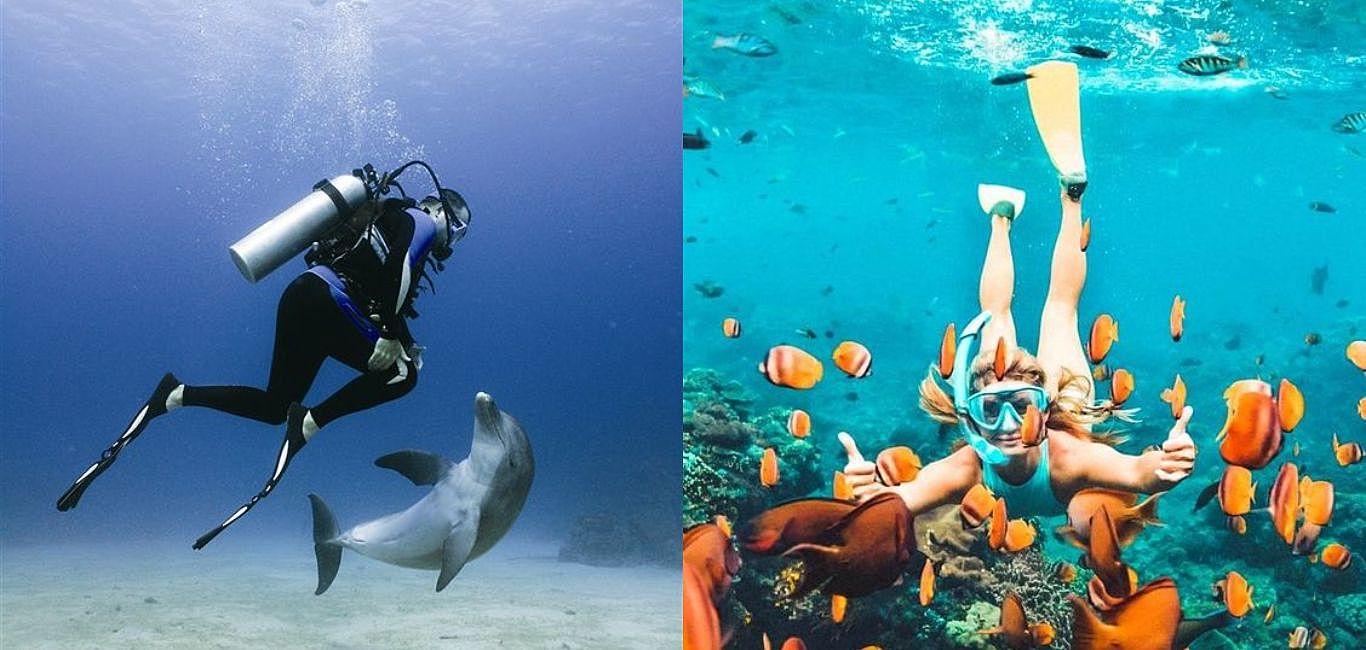 潛水新手必看!自由潛水vs水肺潛水的差別到底在哪裡?